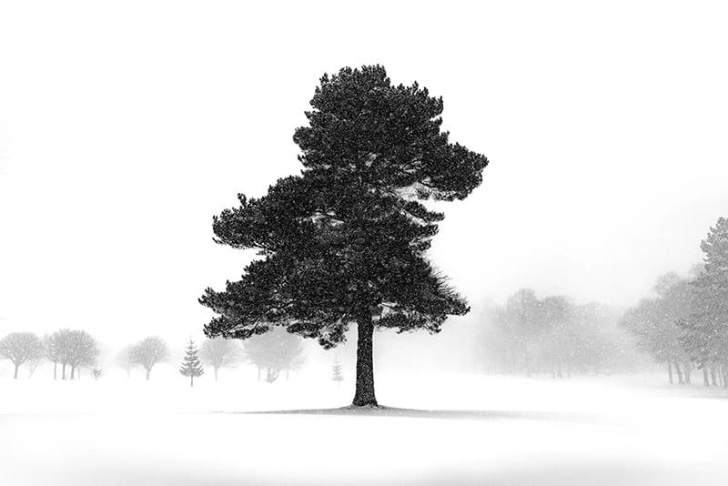 Landscape-Photographer-Glasgow-003
